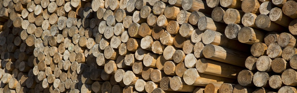 Pile of Timber Poles